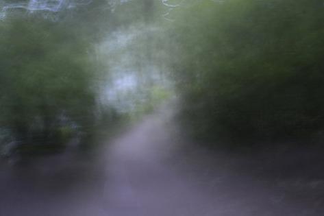 USA, Alaska, Abstract Pathway Fotografie-Druck