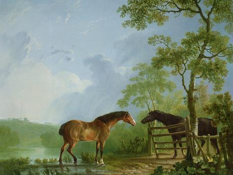 Mare and Stallion in a Landscape Giclée-Druck