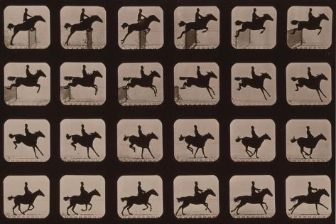 Muybridge Locomotion, Horse Leaping Hurdle, 1881 Giclée-Druck