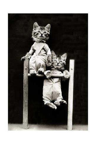 The Acrobats, 1914 Fotografie-Druck