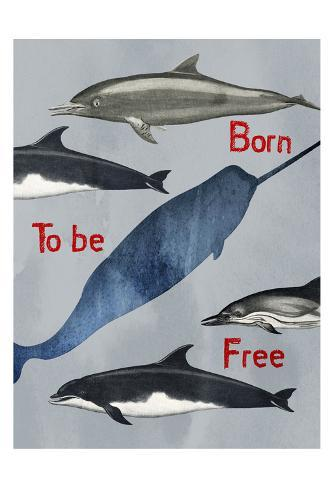 Born To Be Free Kunstdruck