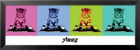 Steez-Dj Kitty Laminiertes gerahmtes Poster