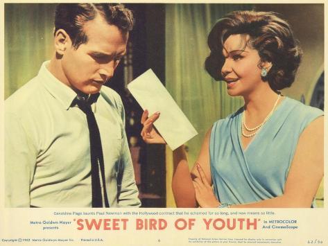 Sweet Bird of Youth, 1962 Kunstdruck