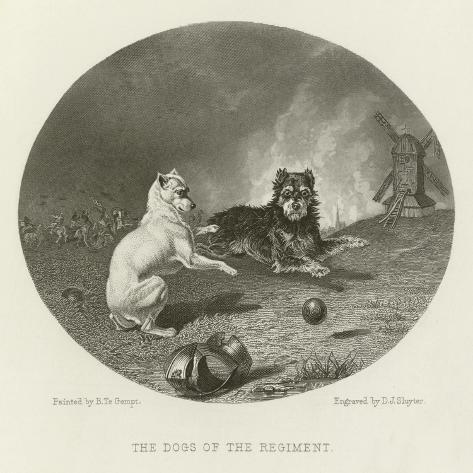 The Dogs of the Regiment Giclée-Druck