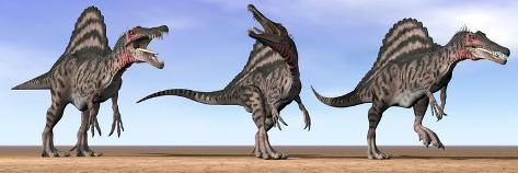 Three Spinosaurus Dinosaurs Standing in the Desert Kunstdruck