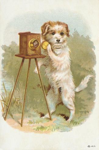 Trade Card of a Terrier Photographer Giclée-Druck