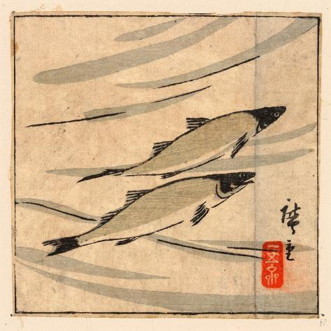 Ayu Zu, River Trout (Ayu). [Between 1868 and 1894], 1 Print : Woodcut, Color ; 9.6 X 10.8 Giclée-Druck