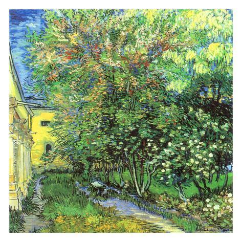 Jardin de l 39 hospice saint paul schilderijen van vincent van gogh bij - Ikea barakaldo jardin saint paul ...
