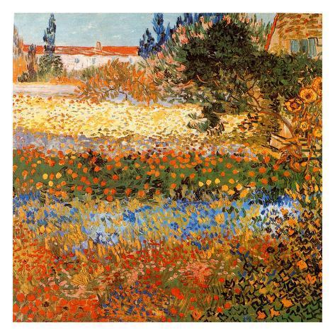 Jardin Fleuri A Arles Poster von Vincent van Gogh - bei AllPosters.ch