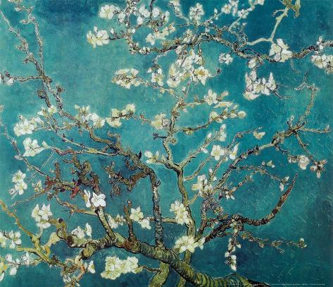 Vincent Van Gogh Turquoise Almond Branches in Bloom, San Remy Art Poster Print Mini-Poster