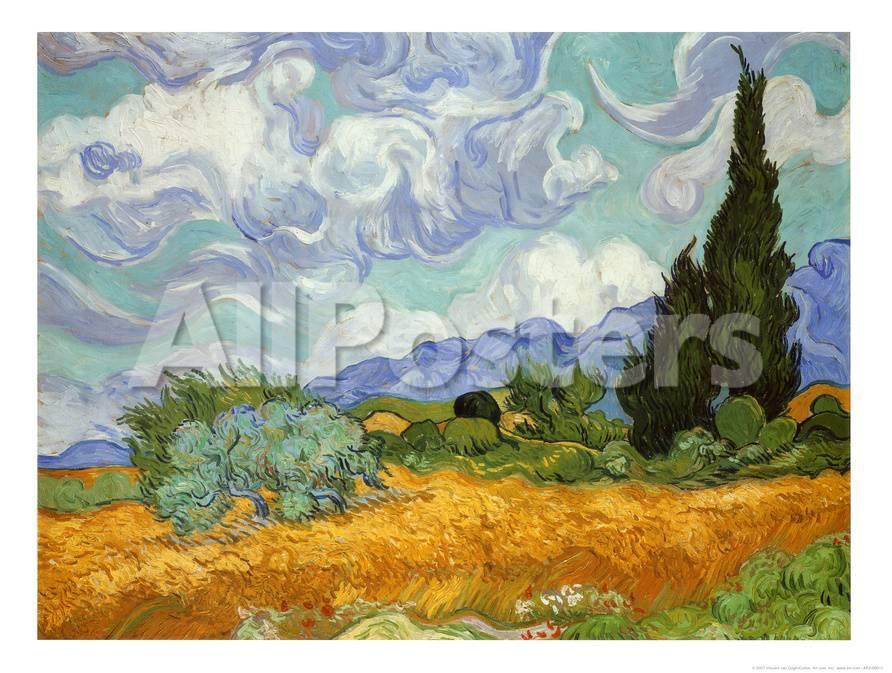 Zypressen Kunst von Vincent van Gogh bei AllPosters.de