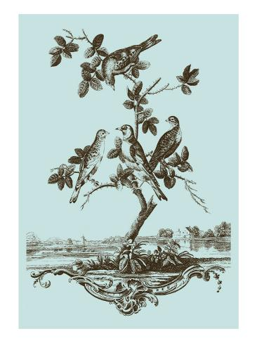 Avian Toile I Kunstdruck