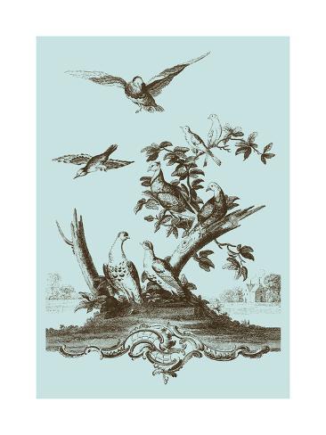 Avian Toile IV Kunstdruck