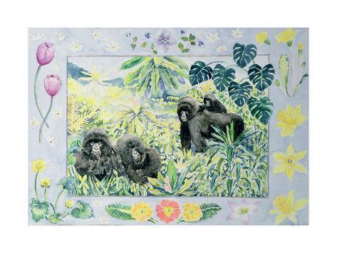 Mountain Gorillas (Month of March from a Calendar) Giclée-Druck