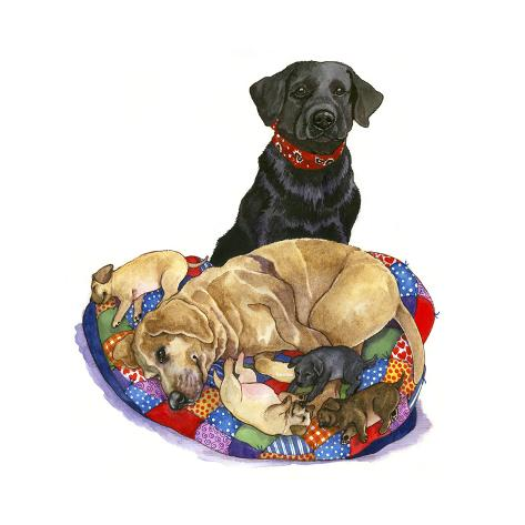 Lab Dogs Giclée-Druck
