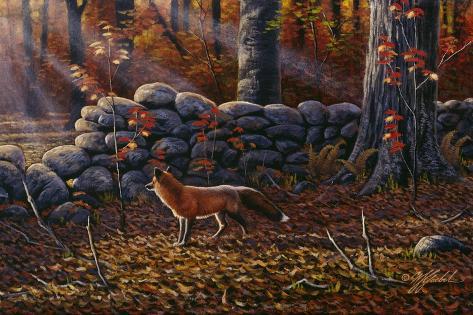 Autumn Reds - Red Fox Giclée-Druck