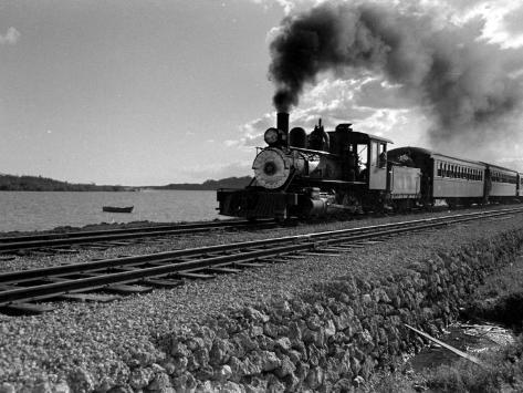 the trains by william heyen essay Essays and criticism on william heyen - critical essays.