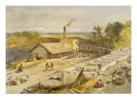 Indigo Factory - Bengal, from 'India Ancient and Modern', 1867 (Colour Litho) Giclée-Druck
