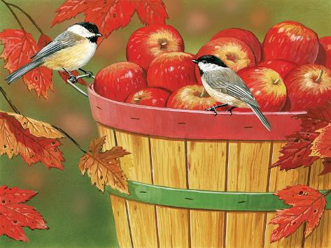Apples in Basket with Chickadees Giclée-Druck