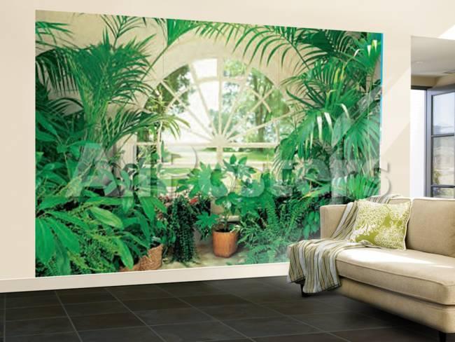 Fototapete tropen  Wintergarten mit tropischen Pflanzen Fototapete Wandgemälde bei ...