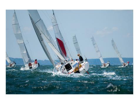 Women Sailing at Regatta Kunstdruck