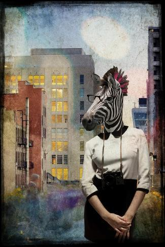 Zebra Strolling the High Line Giclée-Premiumdruck
