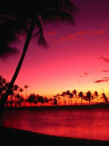 オールポスターズの アン セシル sunset at anaehoomalu beach