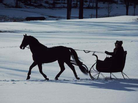 オールポスターズの アイラ ブロック horse drawn sleigh ride at