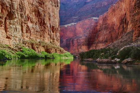 オールポスターズの ジョン フォード usa arizona grand canyon