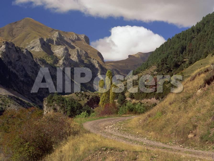 オールポスターズの マイケル バッセル landscape of rough road
