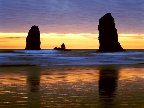 オールポスターズの モンテ ナグラー canyon beach sunset cannon