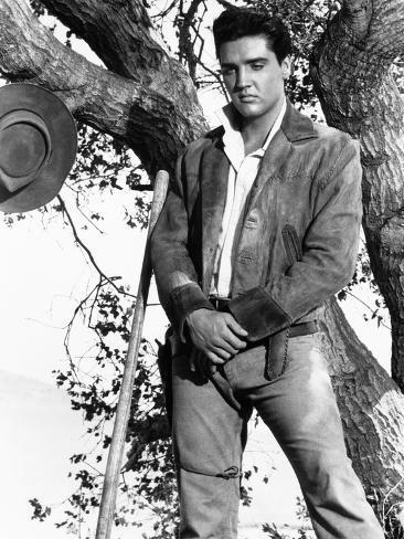 燃える平原児(1960年) 写真