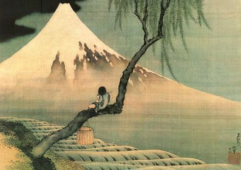 Boy on the Tree ミニポスター