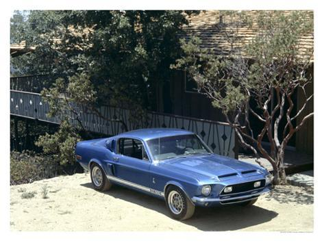 1968 Shelby GT500 Giclee Print