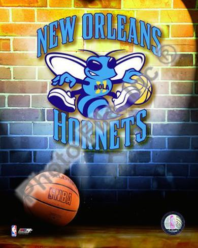2009 New Orleans Hornets Photo