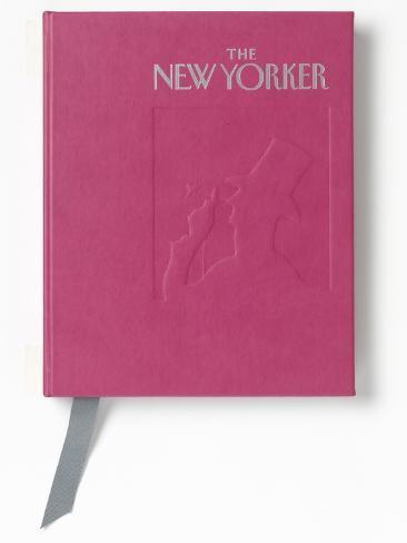 2013 Desk Diary Raspberry Desk Diary (personalized)