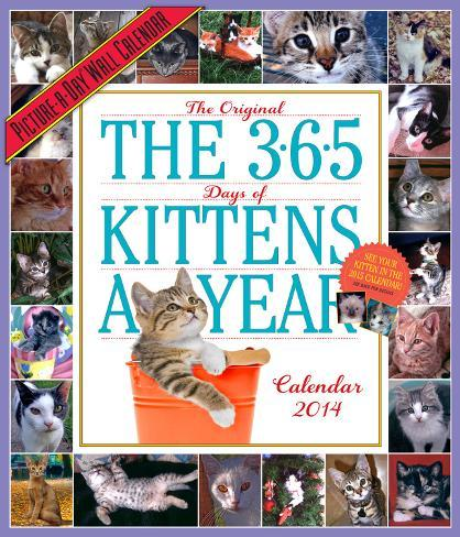 365 Days of Kittens - 2014 Picture-a-Day Calendar Calendars