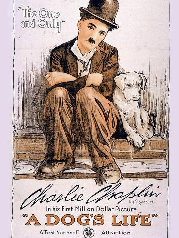 A Dog's Life Movie Charlie Chaplin Poster