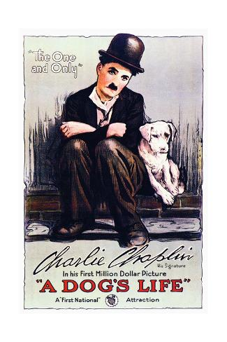 A Dog's Life - Movie Poster Reproduction Stampa artistica