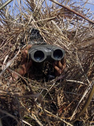 A Scout Observer Practices Observation Techniques Using a Homemade Ghillie Suit Photographic Print