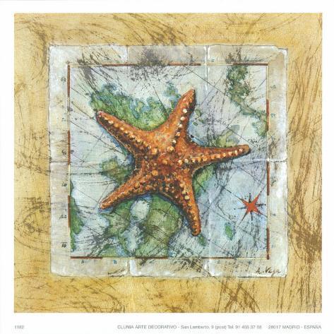 Sea Start Art Print