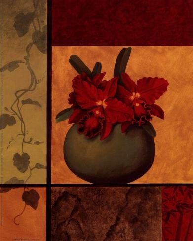 Cattaleya Window Art Print