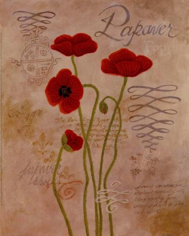 Poppy Fresco I Art Print