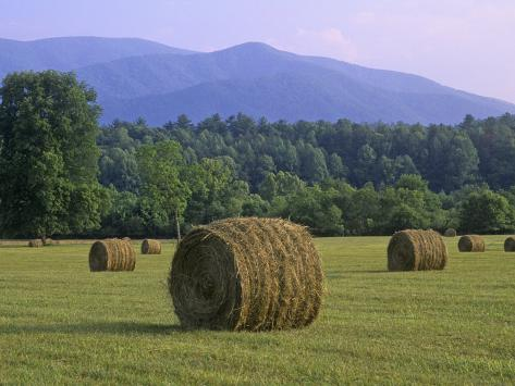 Hay Bales, Cades Cove, Great Smoky Mountains National Park, Tennessee, USA Photographic Print