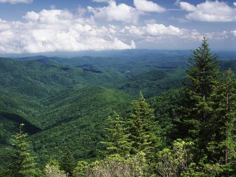 Pisgah National Forest, North Carolina, USA Photographic Print