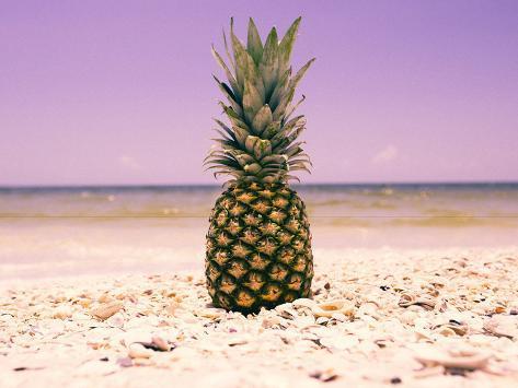 South Florida Pineapple I Valokuvavedos