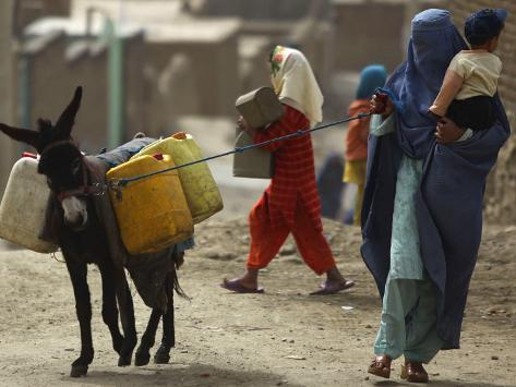 Afghan Woman Walks Along with Donkey Carrying Jerry Cans Filled with Water in Kabul, Afghanistan Photographic Print