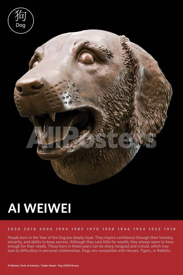 Zodiac Heads: Dog