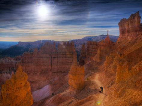 Utah, Bryce Canyon National Park, Navajo Loop Trail, USA Photographic Print