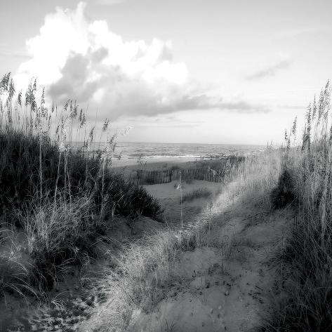 Dunes I Art Print